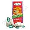 Dr. Popov Čaj Dětský Vitamínek n. s. 20x1. 5g