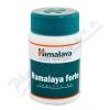 Rumalaya Forte tablets 60