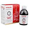 Hyalgel Collagen MAXX vánoční balení 2018 2x500 ml