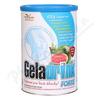 Geladrink FORTE práškový nápoj meloun 420g