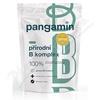 Pangamin přírodní B komplex tbl. 120