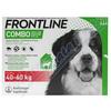 Frontline Combo Spot on Dog 40-60kg pipet.3x4.02ml