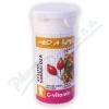 C-Vitamin 100mg - Med&šípek se sukralózou tbl. 60