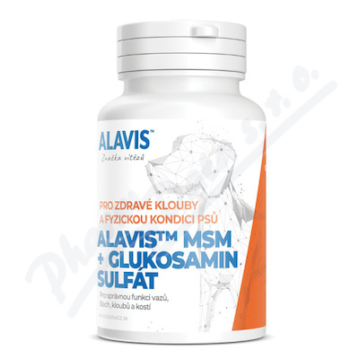 ALAVIS MSM + Glukosamin sulfát 60tbl.